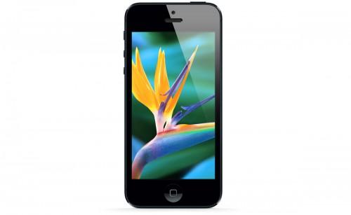Дисплей смартфона iPhone 5